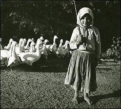 George Szirtes: Some Hungarian women photographers Kata Sugar...
