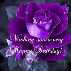 Wishing You A Very Happy Birthday birthday happy birthday happy birthday wishes birthday quotes happy birthday quotes birthday wishes happy birthday images happy birthday pictures Purple Happy Birthday, Happy Birthday Flower, Happy Birthday Friend, Happy Birthday Pictures, Happy Birthday Messages, Happy Birthday Greetings, Birthday Wishes In Heaven, Happy Birthday Woman, Butterfly Birthday