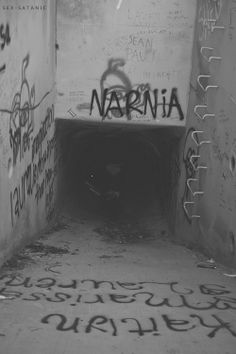 "Typo and Lee was just walking, when they stumbled upon this graffiti. ""Well, isn't this just sad,"" said Typo. ""I always thought Narnia would be. Photographie Indie, Grunge Photography, Aesthetic Photography Grunge, Urban Photography, White Photography, Newborn Photography, Photography Poses, Arte Horror, Aesthetic Pictures"