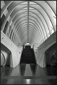 liege belgium train station by calatrava google search