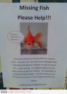 Missing Fish Please Help!!!