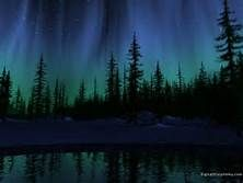evergreen and northern lights aurora borealis mural - Yahoo Image Search Results