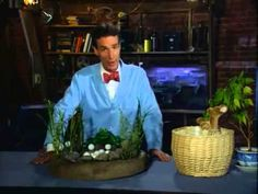 Bill Nye the Science Guy - Life Cycles