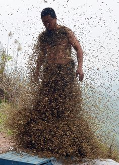 She Ping, a beekeeper in Chongqing, China recently attached 16 queen bees to his body to attract bees, weighing about 7 stones in 40 minutes, breaking his own record for the heaviest coat of bees. Remedies For Bee Stings, Bee Suit, Bee Swarm, Save The Bees, Jolie Photo, Bees Knees, Queen Bees, Bee Keeping, Around The Worlds