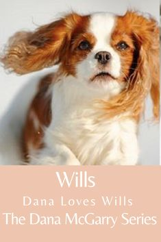 """From Book 1...""""Wills!"""" Dana called. """"Come back! Please!"""" She took the end of the leash and noticed that the metal clasp was worn. The spaniel sprinted on its short legs, its wide furry ears flapping against its head as it enjoyed newfound freedom on the crowded sidewalk of Park Avenue. """"Wills!"""" Dana cried. """"Someone stop him!"""" In the distance, Dana could see Wills fast approaching the busy traffic at the corner of 37th Street and Park. #DanaMcGarrySeries #womensfiction #books Reading Groups, Chapter One, Short Legs, Park Avenue, Book 1, Distance, Life Is Good, Ears, Backdrops"""