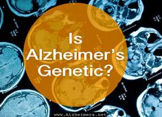 How do genetics and heredity influence your risks for Alzheimer's disease? What risk factors should you know about? Learn more. Source by dlhampton Alzheimer Care, Dementia Care, Alzheimer's And Dementia, Dementia Facts, Vascular Dementia, Dementia Activities, Alzheimer's Prevention, Alzheimers Awareness, Aging Parents