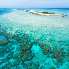 Flying over the coral reef of Nagannu Island, Okinawa, Japan! by ippei + janine, via Flickr
