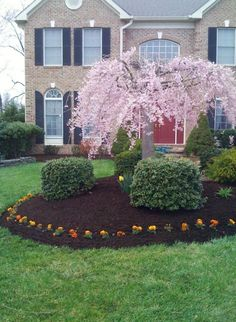 42 Awesome Black Garden Design Ideas Daily Home List Black Mulch Mulch Landscaping Front Door Landscaping