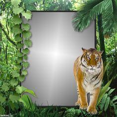 Jungle Walk~ http://imikimi.com/main/view_kimi/1iJTP-38m