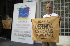Ibama, ouça a ciência e não ceda às pressões políticas | Greenpeace Brasil