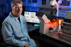 Salk Institute: Cannabinoids remove plaque-forming Alzheimer's proteins from brain cells | EurekAlert! Science News