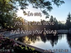 Acts In me, you live and move and have your being. Father's Love Letter, Scriptures, Bible Verses, Here I Am Lord, Bible Lessons, Destiny, Fathers, Acting, Spirituality