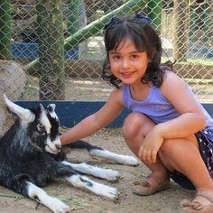Nas mãos das crianças o mundo vira um conto de fadas porque na inocência do sorriso infantil tudo é possível menos a maldade inclusive com os animais !  PARABÉNS PELO SEU DIA MINHA MINI MULHER VEGANA ! #minimulhervegana #mulheresveganas #vegankids #vegan #govegan  #diadascrianças by camilarvj