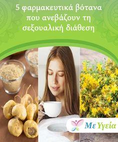 5 φαρμακευτικά βότανα που ανεβάζουν τη σεξουαλική διάθεση   Υπάρχουν 100% φυσικές θεραπείες που, λόγω των ιδιοτήτων τους, ενισχύουν τη σεξουαλική διάθεση και τα επίπεδα ενέργειας στον οργανισμό. Breakfast, Health, Food, Morning Coffee, Health Care, Essen, Meals, Yemek, Eten