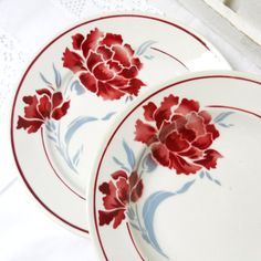 white, red and grey french vintage plates by Badonviller France