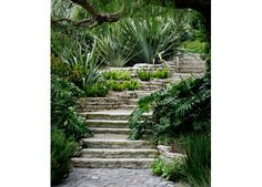 i like how this path is not straight down the hill. This way it is inviting not commanding. Shrader Design   Exterior Design