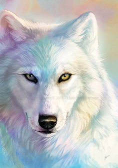 A colorful wolf. You don't need words, just admire.