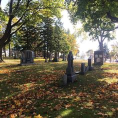 Many thanks to everyone who attended today's Tea & Walk of the Port Oshawa Pioneer Cemetery!  #oshawa #ouroshawa #cemetery #oshawamuseum