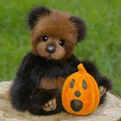 Autumn .. a mink bear by By Tammy Wamboldt | Bear Pile