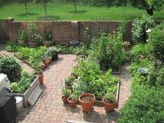 Planter garden on concrete or paved yard