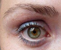 Human Eye | Review: Max Factor - Smoky Eye Effect Eyeshadow