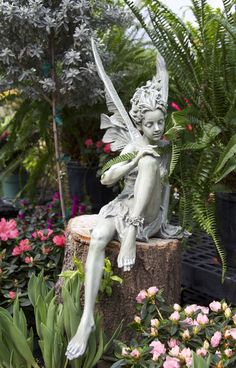 Dwarf Japanese azaleas and ferns make a great backdrop for the fairy statue.
