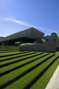Green steps at Concrete House by A-cero Architects
