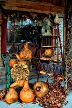 birdhouse on an old ladder and gourds on the porch. Get a few of David's gourds. Autumn Decorating, Porch Decorating, Fruits Decoration, Konmari, Decoration Vitrine, Hallowen Ideas, Autumn Display, Fall Displays, Shop Displays