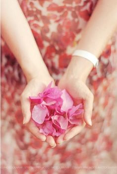 rose petals in palms http://straw-berrymood.livejournal.com/154520.html