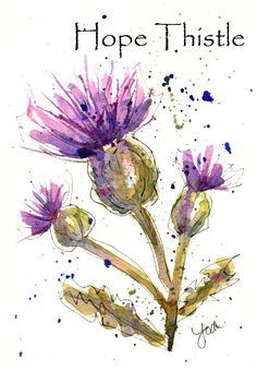 Hope Thistle bring a smile to your lips. Hope Thistle bring joy to your day. Hope Thistle help you see the beauty in nature. Hope Thistle encourage you to create. Hope Thistle brighten your day. Watercolor Drawing, Watercolor Cards, Watercolor And Ink, Watercolor Illustration, Watercolor Flowers, Painting & Drawing, Watercolor Artists, Watercolor Portraits, Watercolor Landscape