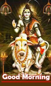 Good Morning Images Download, Good Morning Wallpaper, Morning Pictures, Wallpaper Pictures, Morning Greeting, Image Hd, God, Photos, Indian Gods