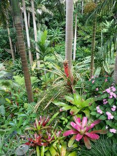 Gardens in Barbados