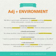 Collocations Adjective + Environment