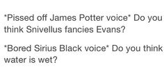 Sirius and James