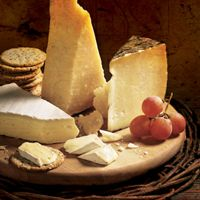 Publix Deli Specialty Cheeses - with pairing ideas!!