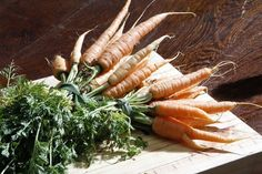 The freshest carrots ever. Organic goodness that goes into our juices and dishes. Green Cafe, Juice Cleanse, Juices, Carrots, How Are You Feeling, Yummy Food, Organic, Meals, Fresh