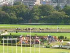 """Tokyo Keibajo"" (Corsa di Cavalli), Tokyo Japan (Ottobre)"