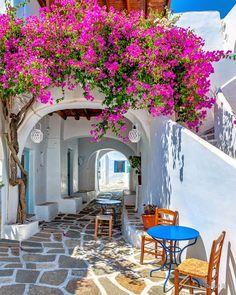 Carousel Paros Island - Greece Pictures by minogiannisvalantis Santorini Grecia, Paros Greece, Wonderful Places, Beautiful Places, Places To Travel, Places To Go, Paros Island, Beau Site, Vacations To Go