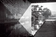 The Los Angeles River is reflected under a freeway overpass, while, in the background, willow trees grow on an island in the soft-bottom stretch known as the Glendale Narrows. Living In La, Willow Tree, Growing Tree, Photo Essay, Natural World, Past, Bear, River, Island