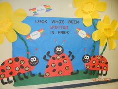Spring and ladybug bulletin board idea: Pics of the students are in the spots