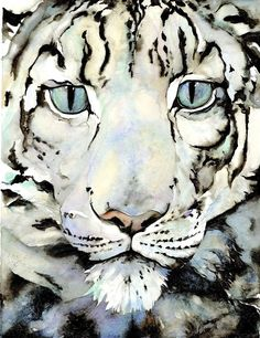 "Front cover for ""The Snow Leopard"", by Jackie Morris"