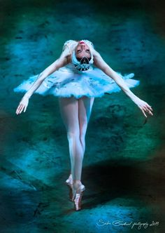 Victoria Tereshkina - Swan Lake, Baden Baden, Germany - 2013. To follow more boards dedicated to tutus and dance costumes, little ballerinas, quotes, pointe shoes, makeup and ballet feet follow me www.pinterest.com/carjhb. I also direct the Mogale Youth Ballet and if you'd like to be patron of our company and keep art alive in Africa, head over to www.facebook.com/mogaleballet like us and send me a message!