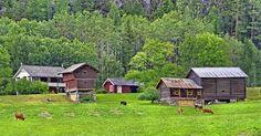 Telemark landscape. Kviteseid, Norway. By MotoG