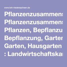 Pflanzenzusammenstellung, Pflanzen, Bepflanzung, Garten, Hausgarten : Landwirtschaftskammer Niedersachsen