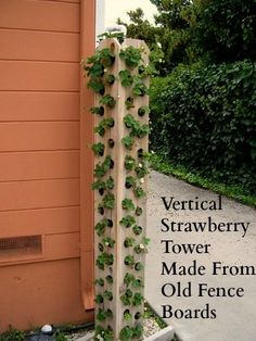Strawberry tower made from fence boards. Lettuces, arugula, spinach, herbs of all kinds! And uses way less dirt than a traditional pallet garden! #verticalgardening