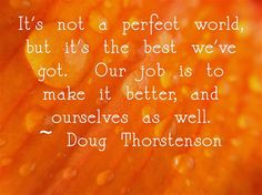 It's not a perfect world, but it's the best we've got. Our job is to make it better, and ourselves as well.  ~ Doug Thorstenson