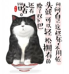 吾皇 - 白茶