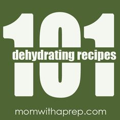 101+ Dehydrating Recipes from Mom with a Prep Blog