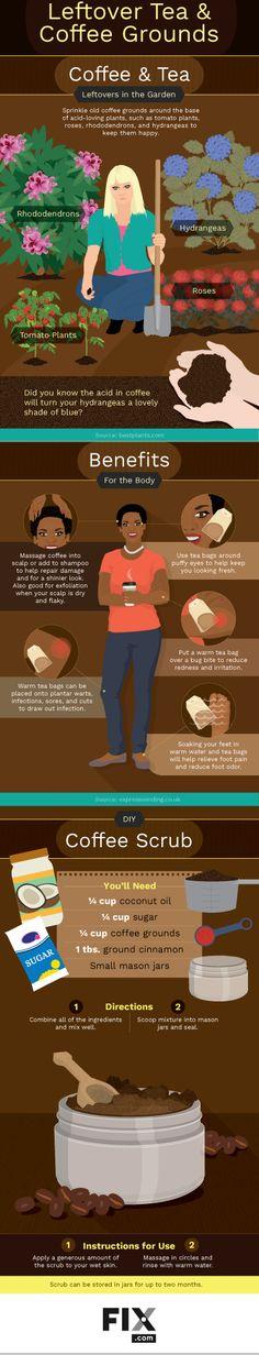 Health Benefits of Coffee Grounds and Tea Leaves   Fix.com