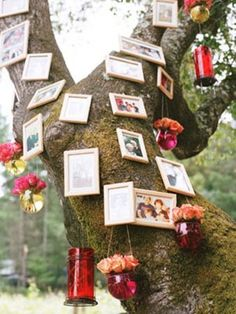 Indian Wedding Decor - Family Tree - Indian Wedding Site Home - Indian Wedding Site - Indian Wedding Vendors, Clothes, Invitations, and Pictures.